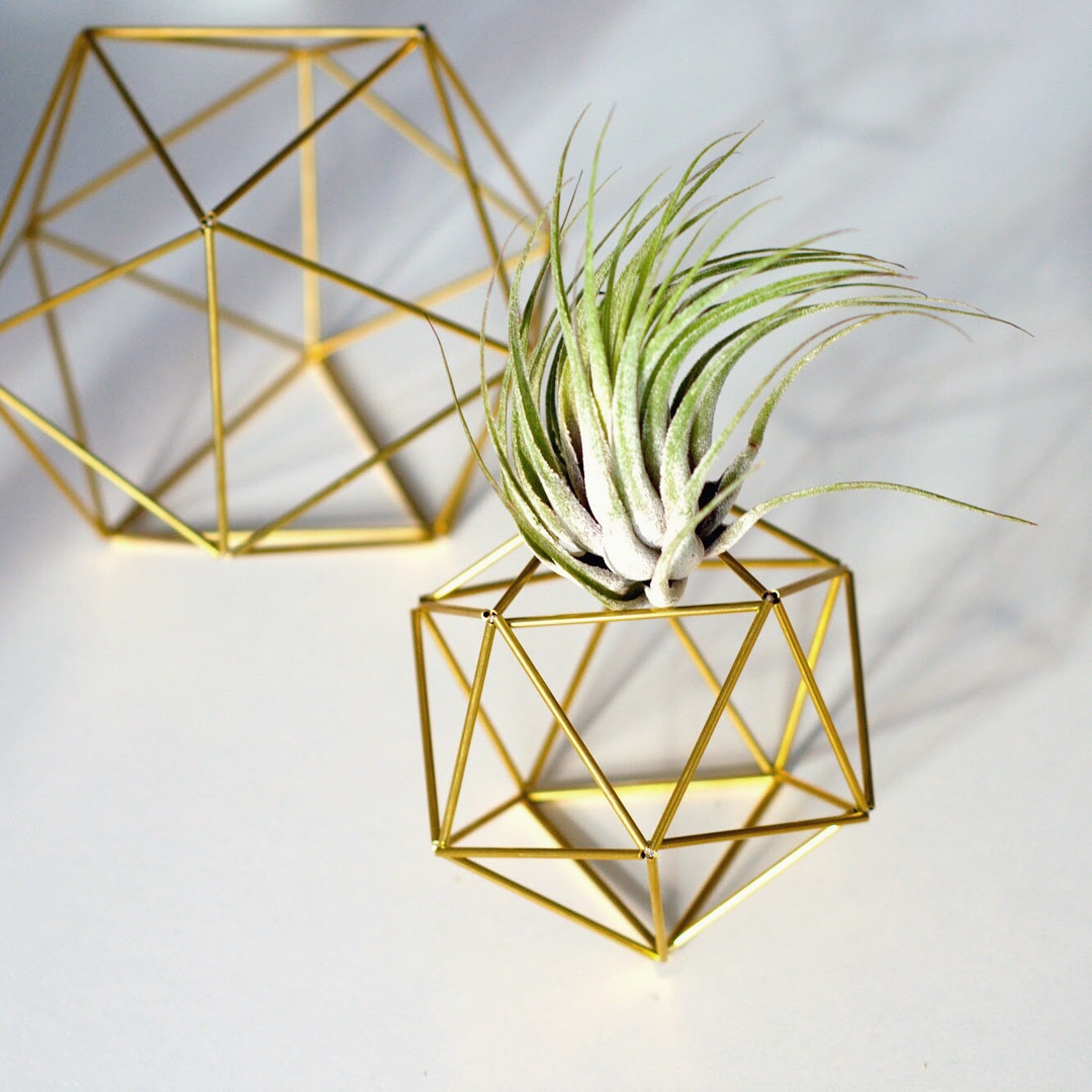 Air plant holder, Himmeli Icosahedron 01 by Fuxigold