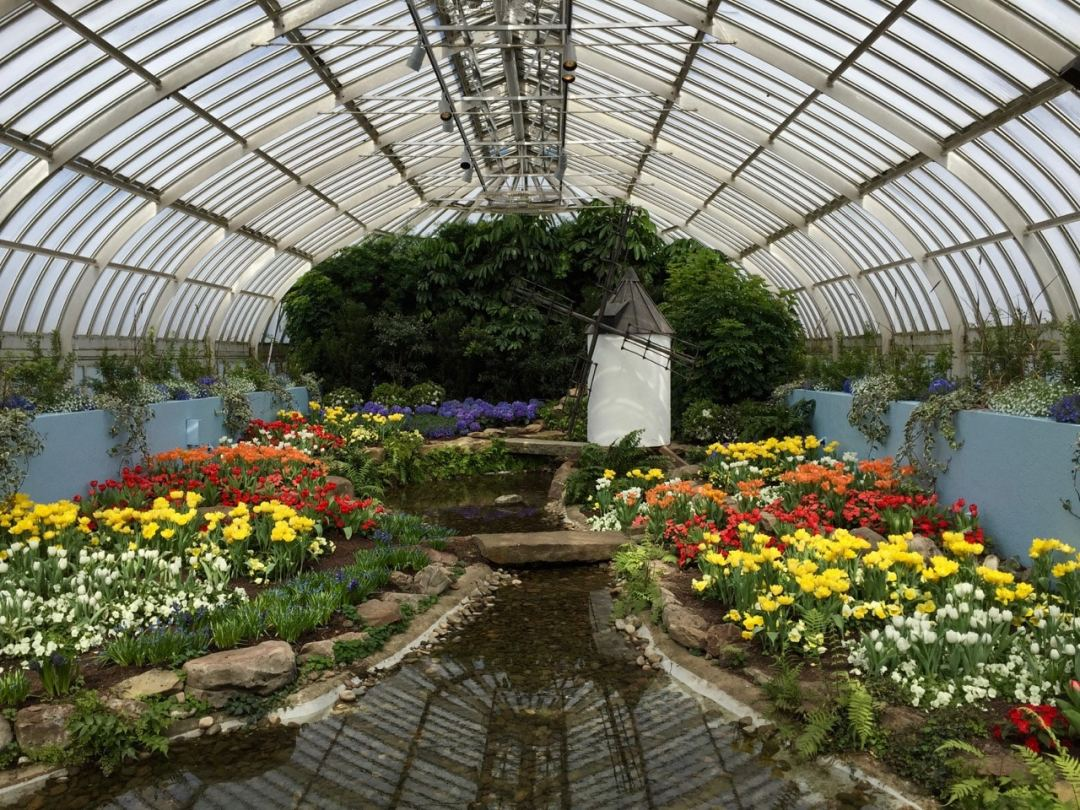 9 things you should know before you visit phipps conservatory and east room spring show visit phipps botanical garden photo by mickey gast mightylinksfo