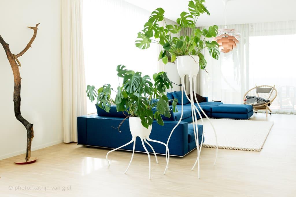 Monstera planters by Tim van de Weerd 2