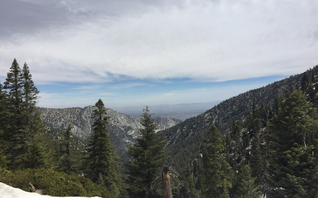 Cucamonga Peak Winter Hike Via Icehouse Canyon Trail