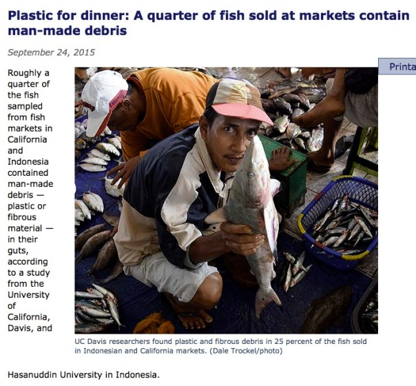 A quarter of fish sold at markets contain man-made debris