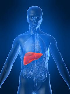 LIVERGEN: Prevent The Invasion Of Harmful Virus To Liver