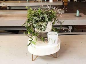 Trendy stilleven met kamerplanten