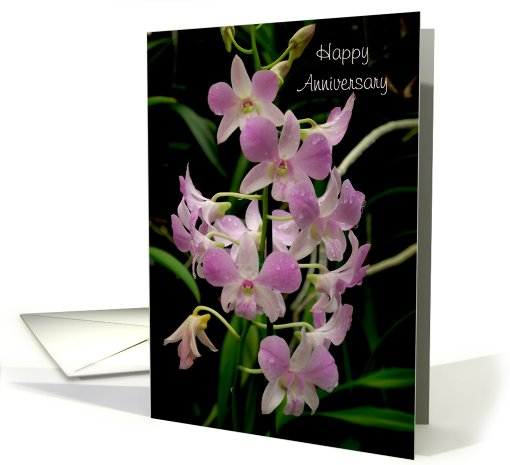 Happy Anniversary Card Pink Orchids With Waterdrops Card 529851