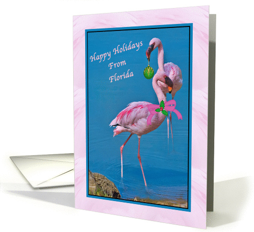 Christmas Happy Holidays From Florida Card 236369