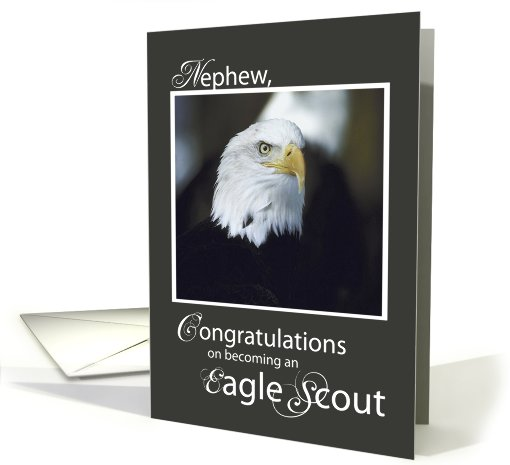 Nephew Congratulations On Eagle Scout Card 772397