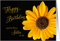 Like A Sister To Me Birthday Cards From Greeting Card Universe
