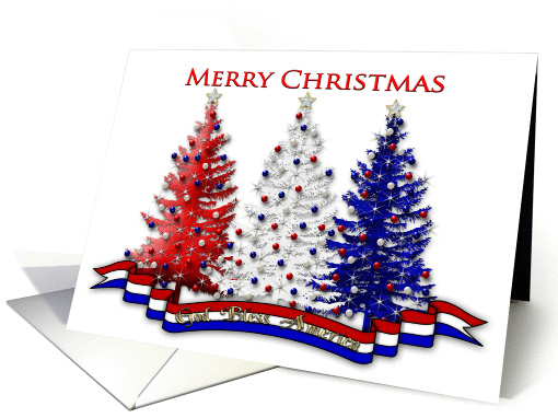 Merry Christmas USA Patriotic Trees Card 1341978