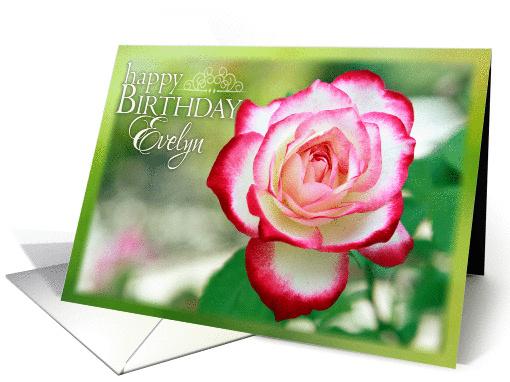 Happy Birthday Evelyn Pretty Rose In Garden Card 1066915