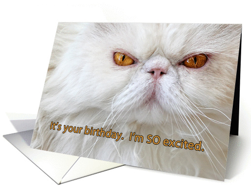 Business Blank Note Cards