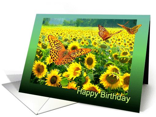 Happy Birthday Butterflies Over Sunflower Field Card 1144230