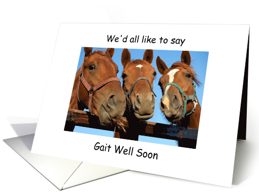 Get Well Soon From All Of Us Horse Humor Card 1203008