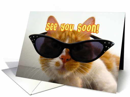 See You Soon Cool Cat With Sunglasses Card 838832
