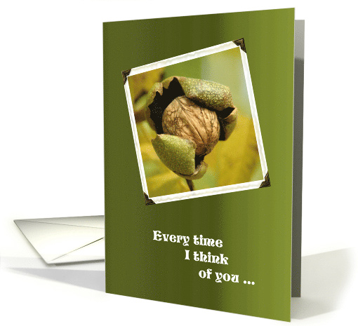 Bust A Nut Vasectomy Get Well Humor Card 916393