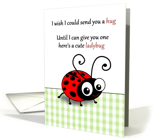 Cute Ladybug Instead Of A Hug Thinking Of You Across The