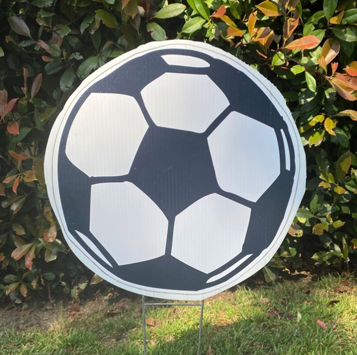 Soccer Balls from Greetings by the Yard, Cards by the Yard, Flamingo Surprise