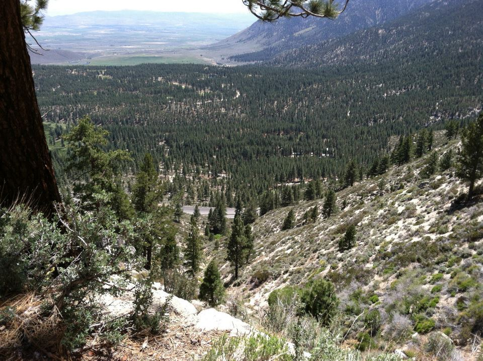 US-50 W, Lincoln Hwy from Kings Canyon Rd