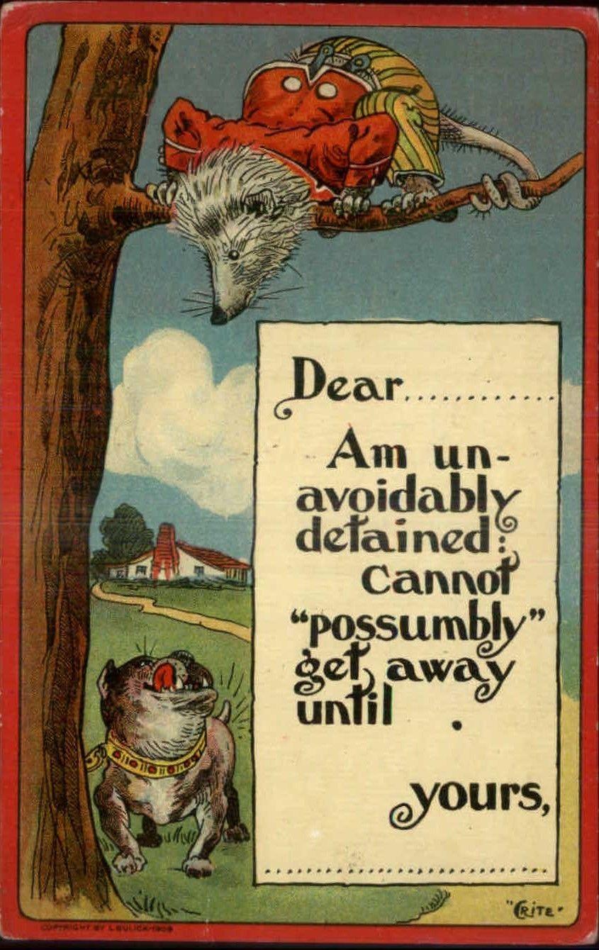Billy Possum Postcard