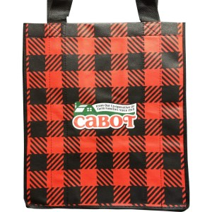 Seriously Sharp bag in Perfectly Plaid red tartan reusable bag from Cabot Creamery the all farmer owned Coop in Vermont.