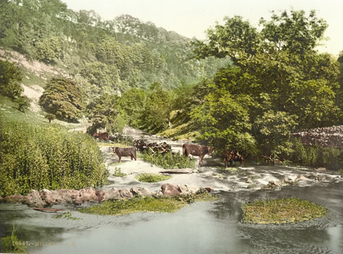 Miller's Dale, Derbyshire, England between 1890 and 1900 Views of the British Isles Photochrom Print Collection