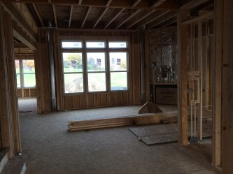 House Progress 10.19.2014 (3)