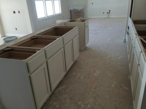 House Progress 11.15.2014 (6)