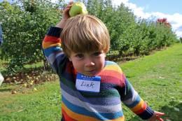 patterson-fruit-farm-2016-9