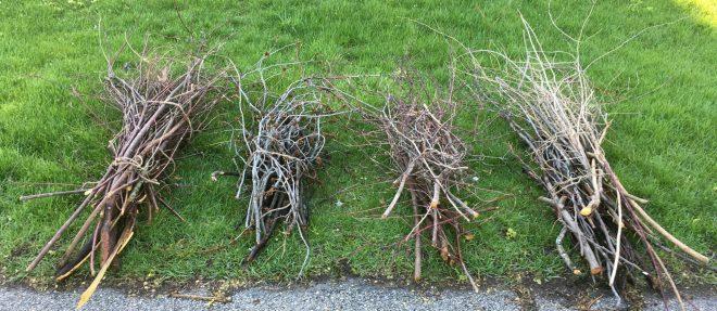 Branch Chipping
