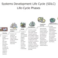 Requirements Lifecycles