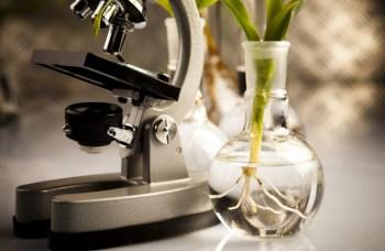 false assumptions of science