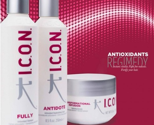 Icon antioxidants Regimedy para el cabello