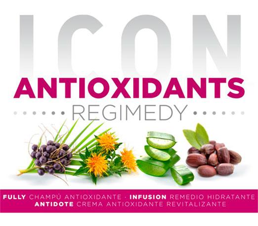 tratamiento antioxidante para el cabello icon en Salón Gregorio Porras