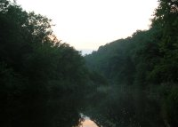 A quiet trout stream at dusk.