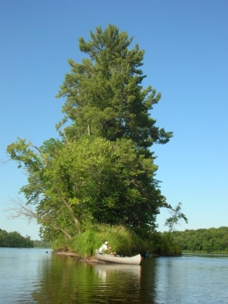 The St. Croix downstream of Grantsburg