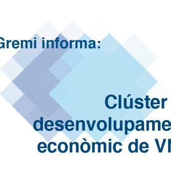 clúster de desenvolupament econòmic de VNG