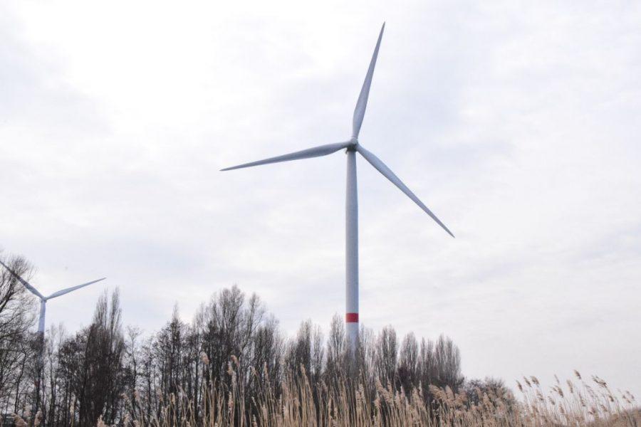 Provincie weigert omgevingsvergunning voor 2 windturbines in Poperinge