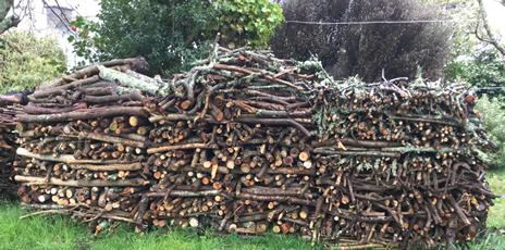 Orderly logs