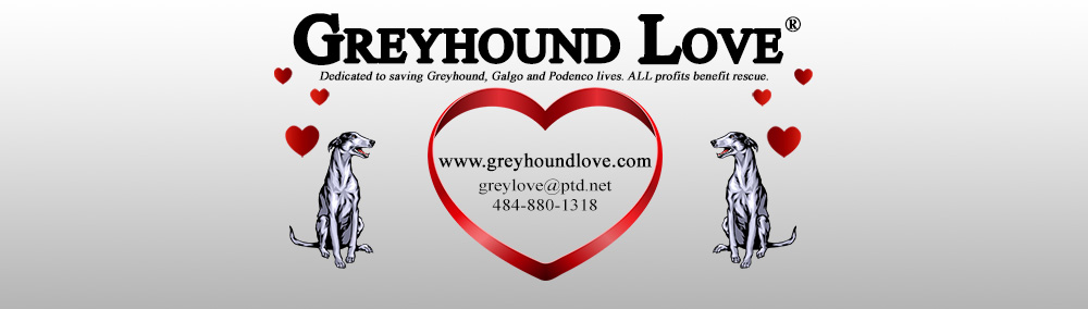 Greyhound Love Collectibles And Publications