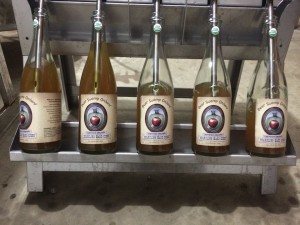 Bear Swamp Orchard offers sweet cider in season, so children can enjoy the organic apple goodness!