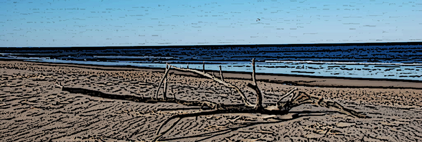 """Sandy Beach,"" by Adavyd; Cropped, shopped, and resized; [CC BY-SA 3.0], from Wikimedia Commons"