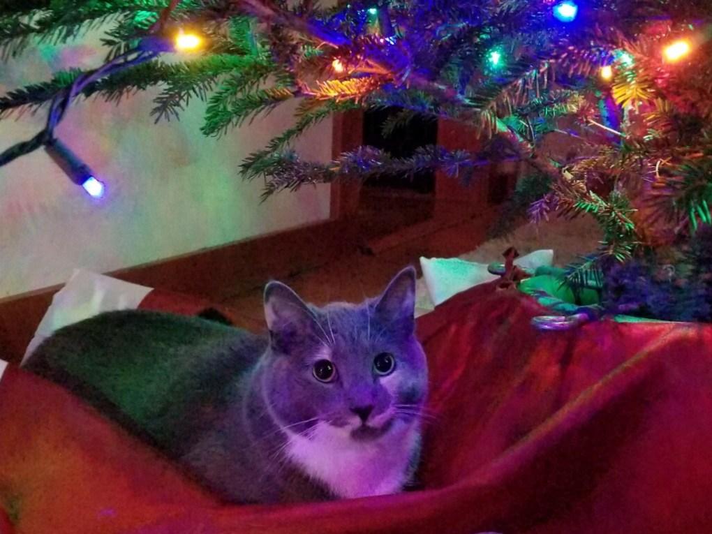 christmas bixby
