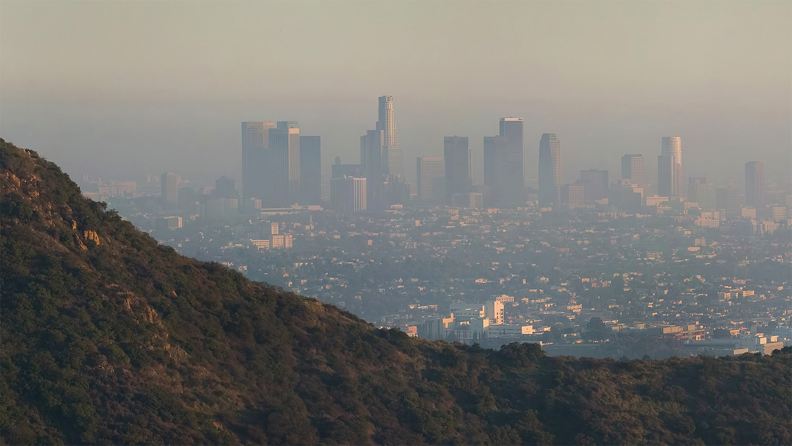 Prominent pollution in 2006 photo Los Angeles, as viewed from the Hollywood Hills, by Diliff (cropped); CC BY-SA 3.0; via Wikimedia Commons.