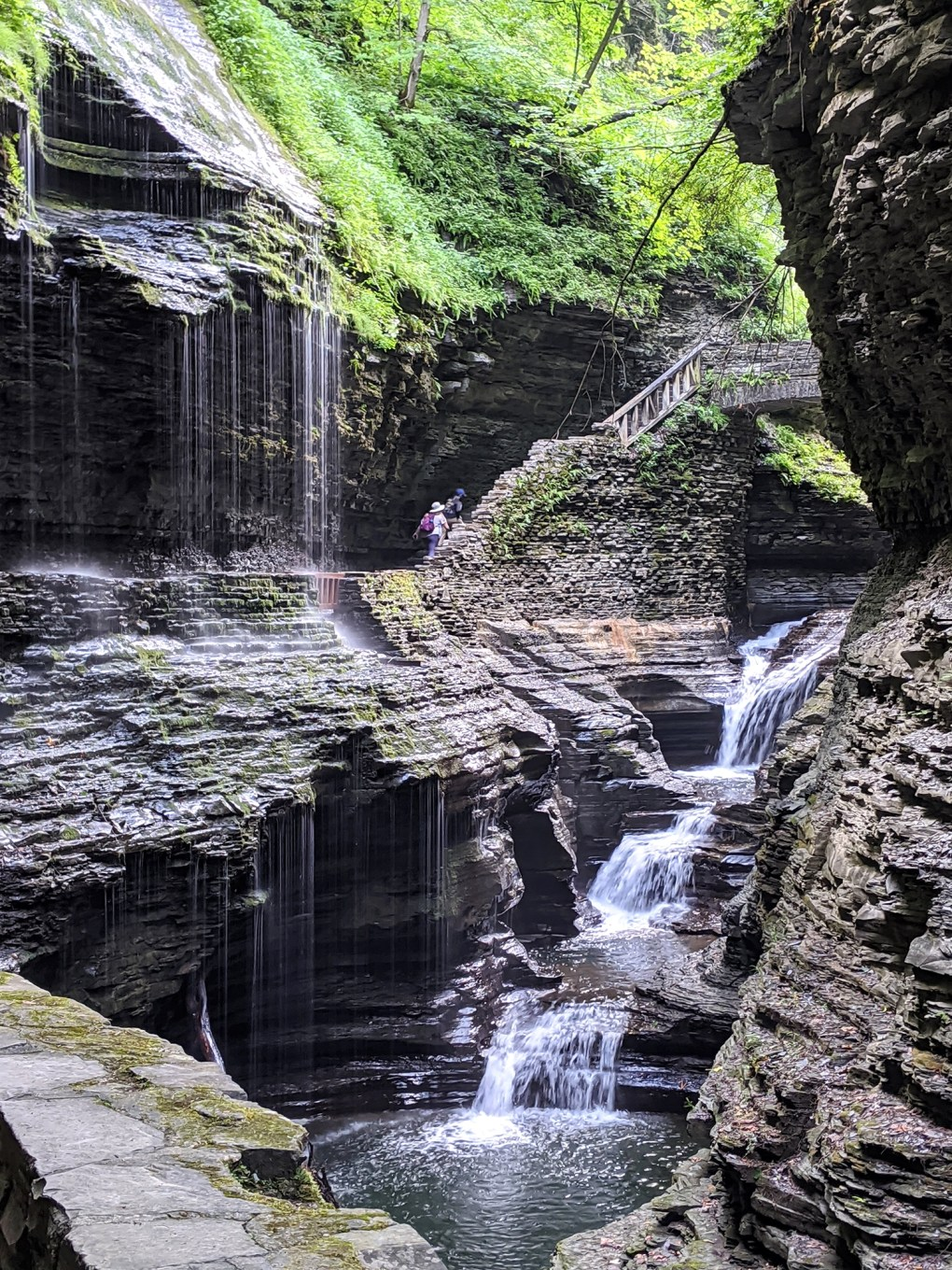 The gorge at Watkins Glen State Park; photo by Robin Catalano.