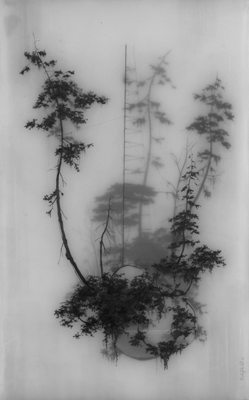 Brooks Shane Salzwedel - Held Up - 2008
