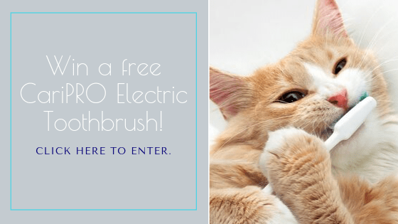 CariPro Electric Toothbrush Giveaway