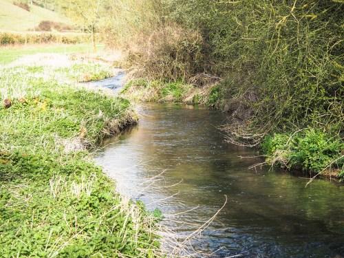 River Cerne
