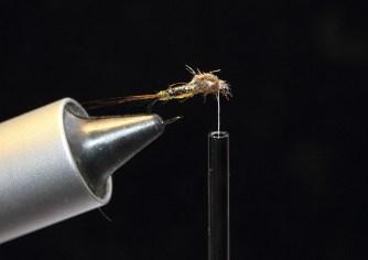 Flexibody nymph