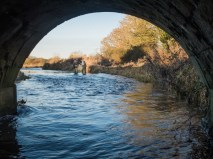 Dorchester Fishing Club