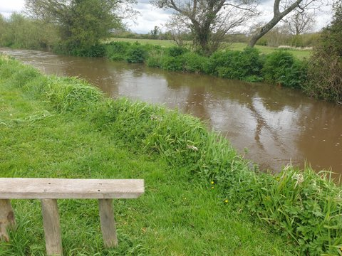 Lower Water, River Frome