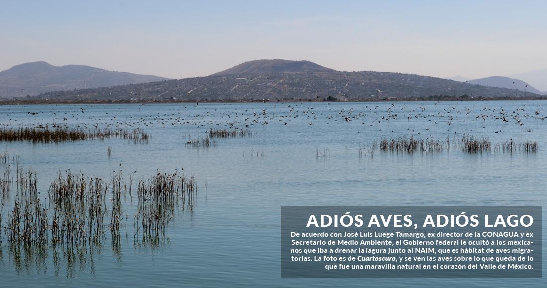 El Gobierno federal ocultó que estaba drenando el lago junto al NAIM: Luege; marchan en CdMx